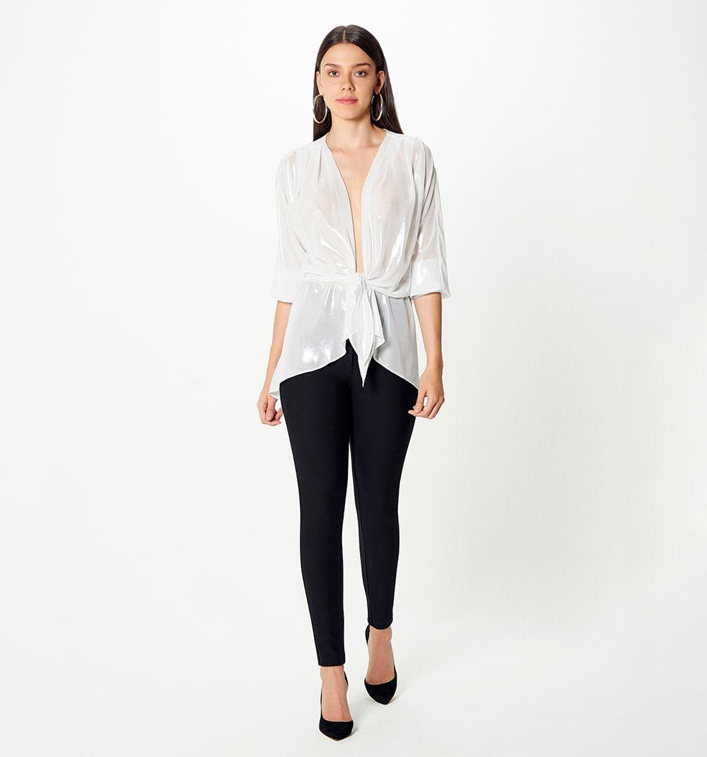 camisasyblusas-plata-s170937d-2