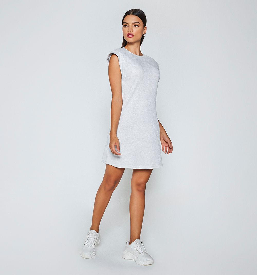 -stfco-producto-Vestidos-PLATA-S141738-2